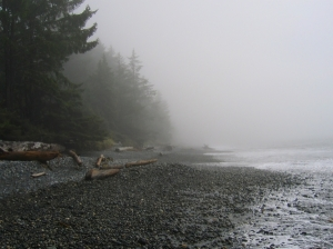 fog-wallpapers-29